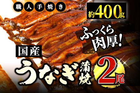 うなぎ蒲焼専門店「柳屋」国産うなぎ蒲焼 (約200g×2尾) B-601