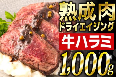 1,000g! 厳選された熟成肉「ドライエイジング ハラミ」 B-737