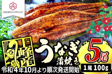 【稚魚から育てて来年お届け】100g×5尾!!『上峰産』うなぎの蒲焼 B-745