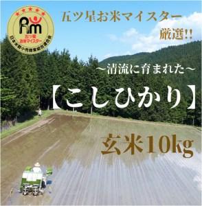 B116-O 【数量限定!!】幻の《天川こしひかり》玄米10㎏