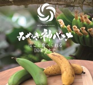 CR001_【国産バナナ】みやき神バナナ5本セット