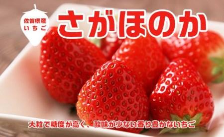 AE001_あま~い!!キンド酵素栽培いちご【さがほのか270g×4パック】