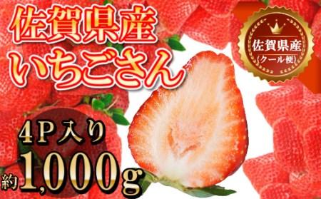 DY039_佐賀県産いちごさん 合計約1㎏ 250g×4P 苺 いちご イチゴ【令和4年2月上旬から順次発送】