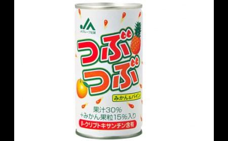 7A195 佐賀県産みかん果汁使用【つぶつぶみかん&パイン】195g×20缶
