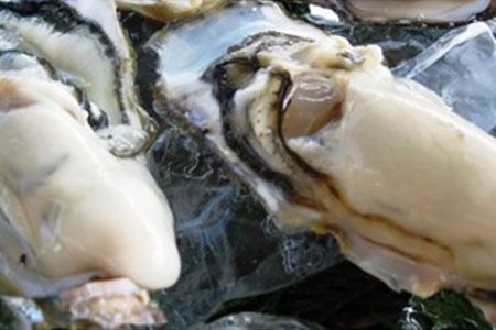 ☆4月30日受付終了☆仮屋湾の真牡蠣(1.2kg)