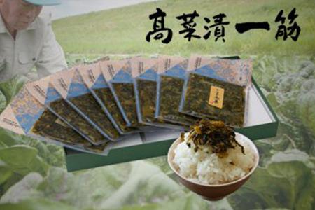 F10-3 高菜乃華 8個入りセット 高菜漬一筋-前田食品工業