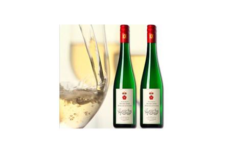 S20-2 有田焼創業400年記念ワイン 2本セット (ミュラー トゥルガウ)(白ワイン)