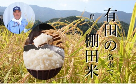 K10-1 有田産の棚田米(夢しずく)10kg 精米