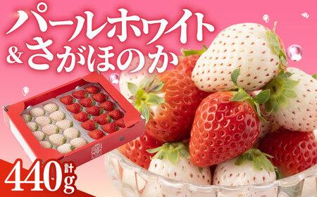 【先行予約】赤白「パールホワイト」&「さがほのか」各220g [IAQ005]