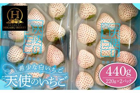【先行予約】味のバランスのよい希少な白いちご「天使のいちご」220g×2パック [IBI001]