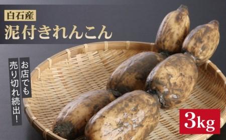 【A-25】白石産泥付きれんこん(3kg)