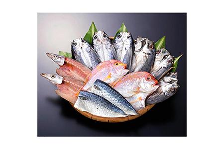 【2632-0077】長崎五島灘一汐干しセット