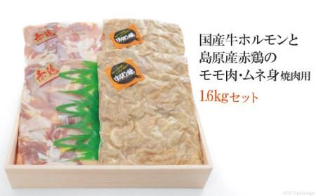 AD154国産牛ホルモンと島原産赤鶏のモモ肉・ムネ身焼肉用1.6kgセット