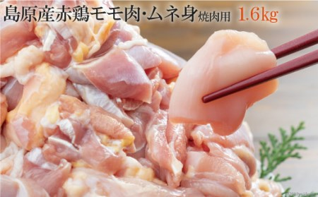 AD155島原産赤鶏のモモ肉・ムネ身焼肉用1.6kg