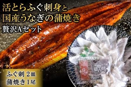AF049活とらふぐ刺身と国産うなぎの蒲焼き贅沢Aセット(ふぐ刺2皿・蒲焼き1尾)