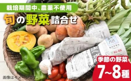 0399 有機農法!旬の野菜詰合せセット 【30pt】