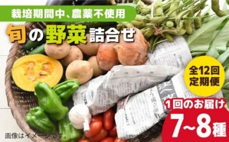 0398 【定期便】毎月お届け 有機農法!旬の野菜詰合せセット 【300pt】