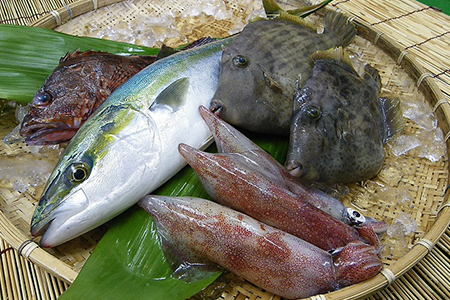 0067 久賀島の朝獲れ鮮魚セット