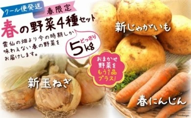 【春の新野菜セット】新じゃがいも・新玉ねぎ・春人参の基本野菜に自慢の旬野菜を1品セットでお届け! 約5kg