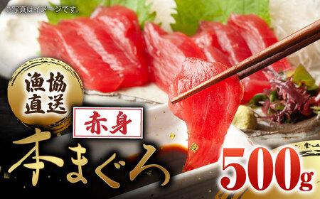 BAK011 【2021年4月から順次配送】長崎県産 本マグロ「赤身」約500g 【大村湾漁業協同組合】