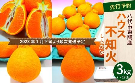 【2021年12月下旬より順次発送予定】【先行予約】 八代市東陽産 ハウス 不知火 3kg 7玉~12玉 柑橘
