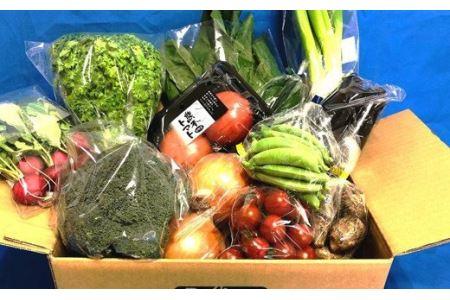 【毎月6ヵ月定期便】なんさまうまか 八代 野菜 セット 5品目以上 野菜