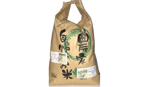 【新米 令和元年産】特別栽培米 特別大地米 精米 5kg