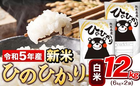 令和2年産 ひのひかり10kg 熊本 県産 白米10kg+国産雑穀米《1月中旬-2月末頃より順次出荷》 令和2年 精米 玉東町