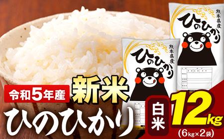 令和2年産 ひのひかり10kg 熊本県産 白米10kg+国産雑穀米 令和2年 精米 大津町《3-7営業日以内に順次出荷(土日祝除く)》