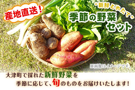 熊本県大津町産 季節の野菜セット(6~8種類)《60日以内に順次出荷(土日祝除く)》野菜 冷蔵 JA菊池 大津中央支所 とれたて市場