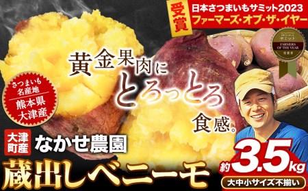 熊本県大津町産 中瀬農園のベニーモ 約3.5kg(大中小サイズ不揃い)《5月中旬-6月中旬頃より順次出荷》