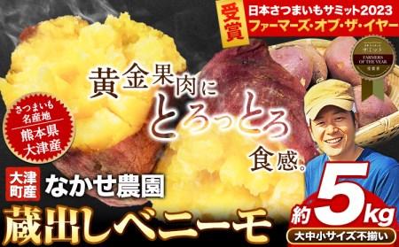 熊本県大津町産 中瀬農園のベニーモ 約5kg(大中小サイズ不揃い)《11月中旬-12月上旬頃より順次出荷》