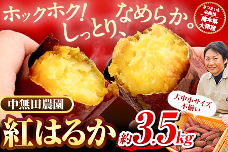 熊本県大津町産 中無田農園の紅はるか 約3.5kg(大中小サイズ不揃い) 熊本県大津町 《5月中旬-6月中旬頃より順次出荷》 さつまいも 芋 スイートポテト 干し芋にも 名産地 特産品