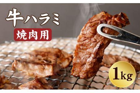 牛ハラミ たっぷり 1キロ 焼肉用 牛肉 ハラミ 冷凍 バーベキュー