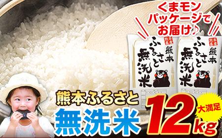 ご家庭用 熊本ふるさと無洗米12kg 熊本県産 無洗米 12kg 精米 御船町《5月下旬-7月上旬頃より順次出荷》