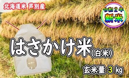 新米ゆめぴりか「はさかけ米」白米 3kg(玄米量)