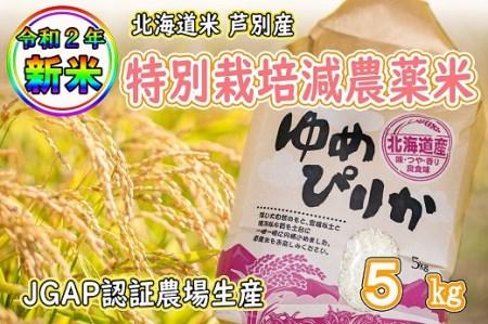 特栽米減農薬 新米ゆめぴりか白米5kg
