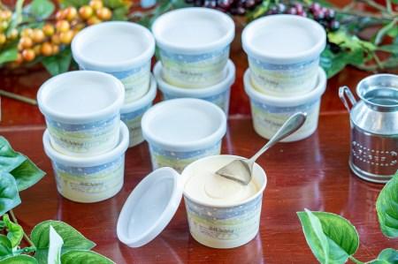 バターミルク使用 濃厚クリーミー横市アイスクリーム 10個
