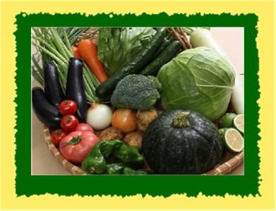 ●旬野菜 年4回の 定期便♪●