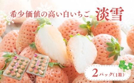 C-01 白いちご「淡雪」・2パック入×1箱