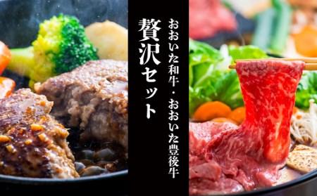 E-54 豊後牛ハンバーグ(9個)&「おおいた和牛」おまかせすきやき肉(500g)贅沢セット