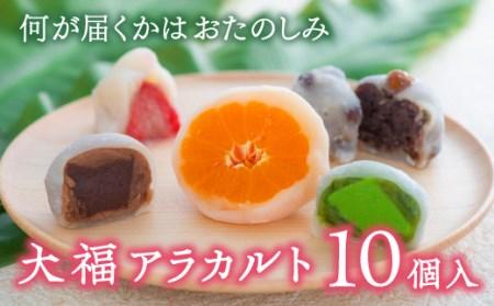 B4-97 大福アラカルト(10個入り)