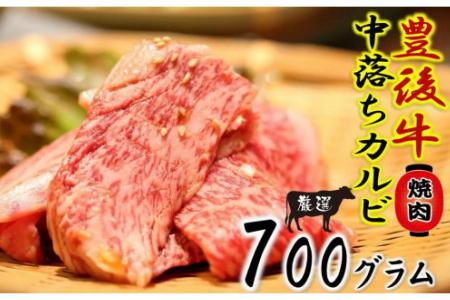 1160R_おおいた豊後牛の中落ちカルビ700g/焼肉用カット
