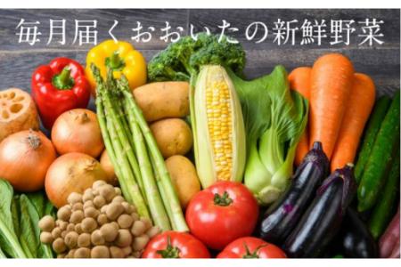 1460R_毎月お届け!おおいたの旬野菜4月から1年間定期便 / 計12回発送