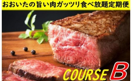 おおいたの旨い肉ガッツリ食べ放題定期便Bコース※計6回発送