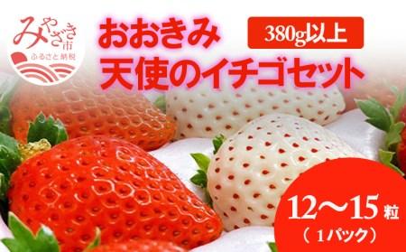 《先行予約》《期間・数量限定》宮崎県産イチゴ おおきみ 天使のイチゴ セット 1パック 380g以上 12粒~15粒