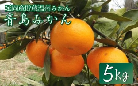 A006 青島みかん
