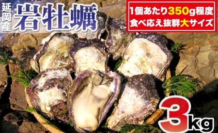 A527 延岡産天然岩牡蠣(生食用)3kg(大)(2021年4月から発送開始)