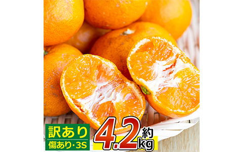 A26-191 農薬・化学肥料不使用!【訳あり】早生みかん(計4.2kg)