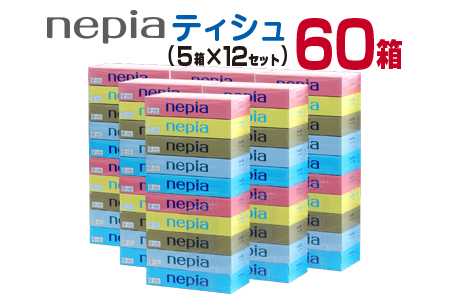 BD41-191 ネピアティシュ計60箱(5箱×12セット)